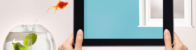 Kies de juiste verfkleur met de Levis Visualizer app