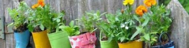 5 tips voor een trendy én budgetvriendelijke tuin
