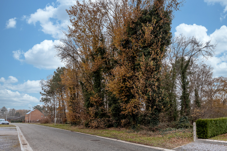 Knappe bouwgrond 9a 02ca voor vrijstaande woning met achterliggend natuurgebied.