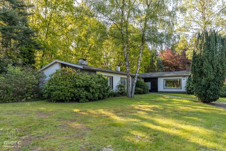 Uniek woonhuis met mogelijkheid tot kantoor of praktijk op bosrijk perceel (96a 72ca)